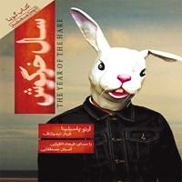 سال خرگوش