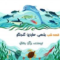 قصه شب: ماهی ساردین کنجکاو