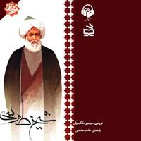 شیخ طوسی