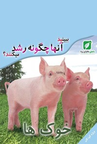 ببینید خوکها چگونه رشد میکنند؟