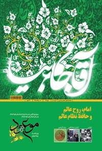 ماهنامه موعود _ شماره ۱۷۲ _ خرداد ۹۴
