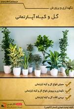 نگهداری و پرورش گل و گیاه آپارتمانی