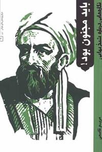 باید مجنون بود؛ نگارههایی دربارهی شیخ بهایی