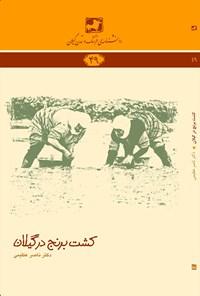 کشت برنج در گیلان