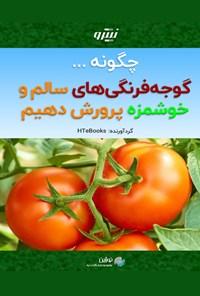 چگونه گوجه فرنگی های سالم و خوشمزه پرورش دهیم
