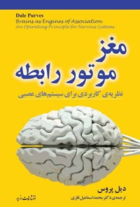 مغز، موتور رابطه