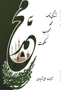 زندگی نامه محمد محبوب ملکوت