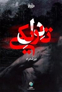 چکیده رمان دل تاریکی