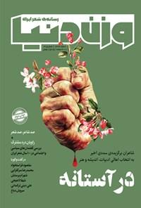 مجله وزن دنیا ـ شماره ۱۳ ـ اسفندماه ۱۳۹۹
