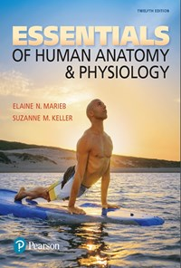 Essentials of Huan Anatomy & Physiology