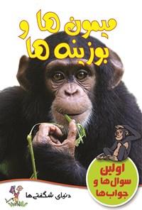 میمون ها و بوزینه ها